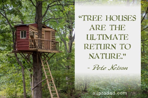 4 steps to building a great tree house all pro dad all for Building a house quotes