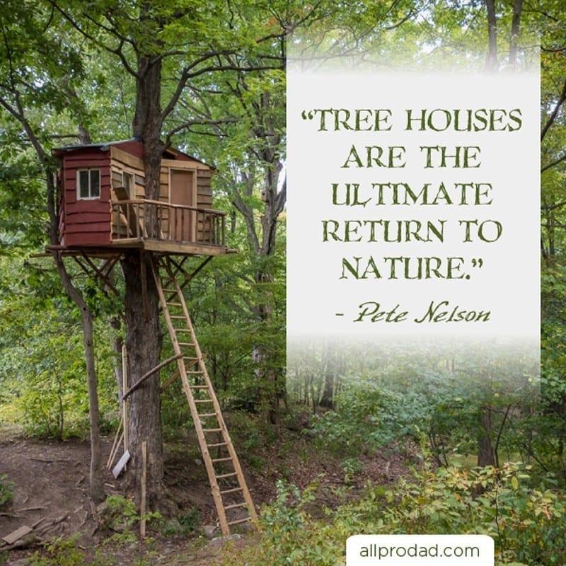 Tree House Quote