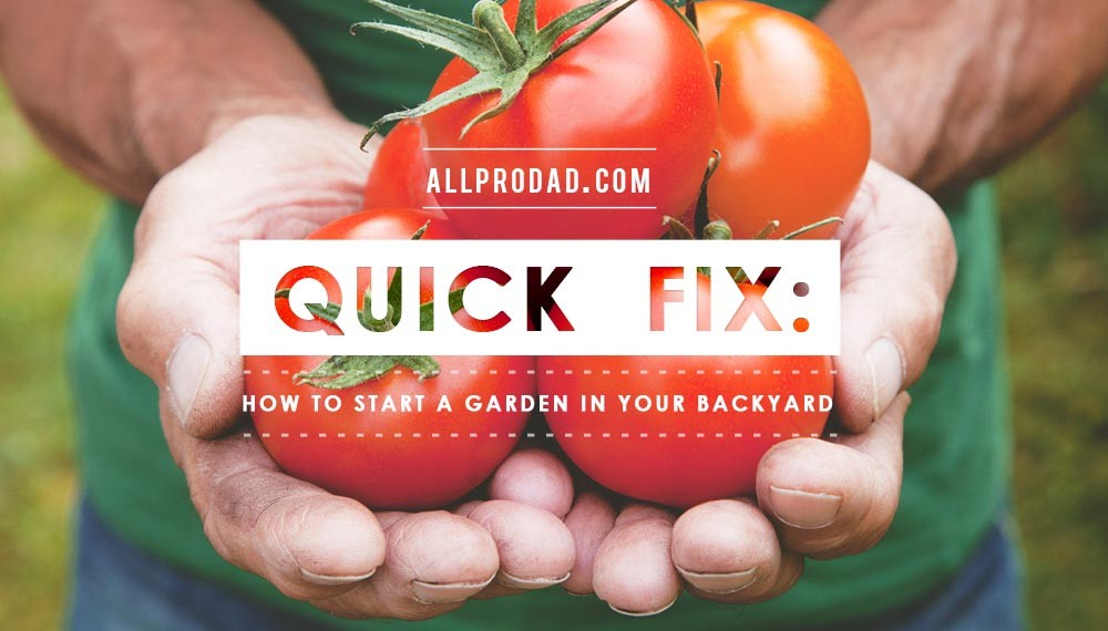 Quick Fix How to Start a Garden in Your Backyard All Pro Dad